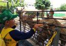 Berkunjung ke Kebun Binatang Surabaya